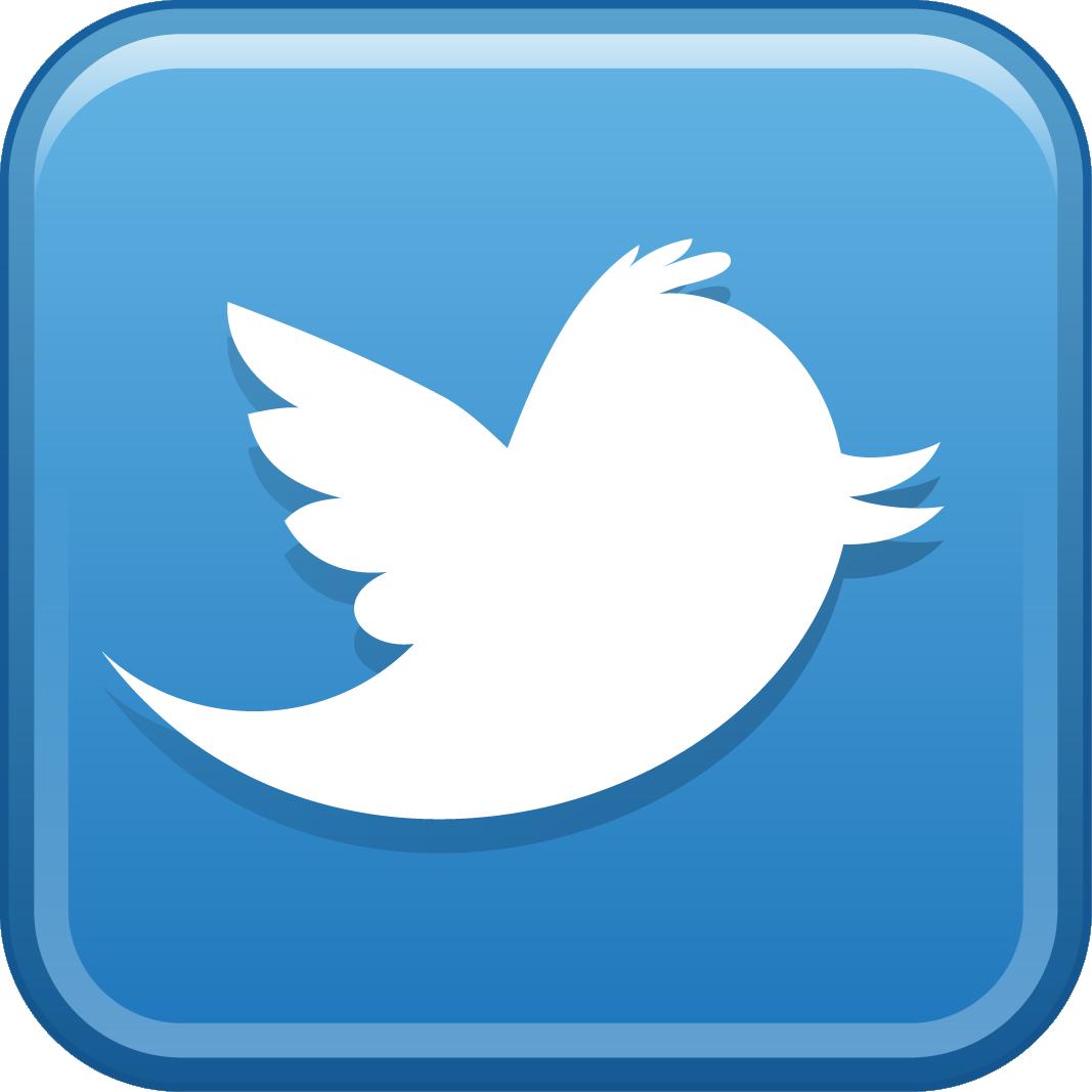 Celebrity follows you twitter